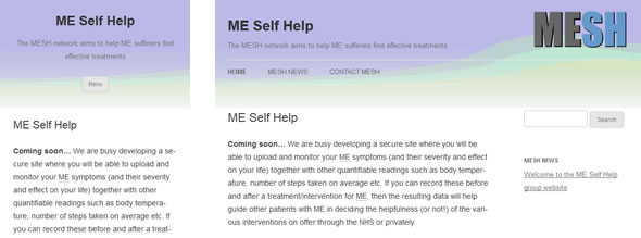 MESH website, showing phone screen (left) and wide screen (right)